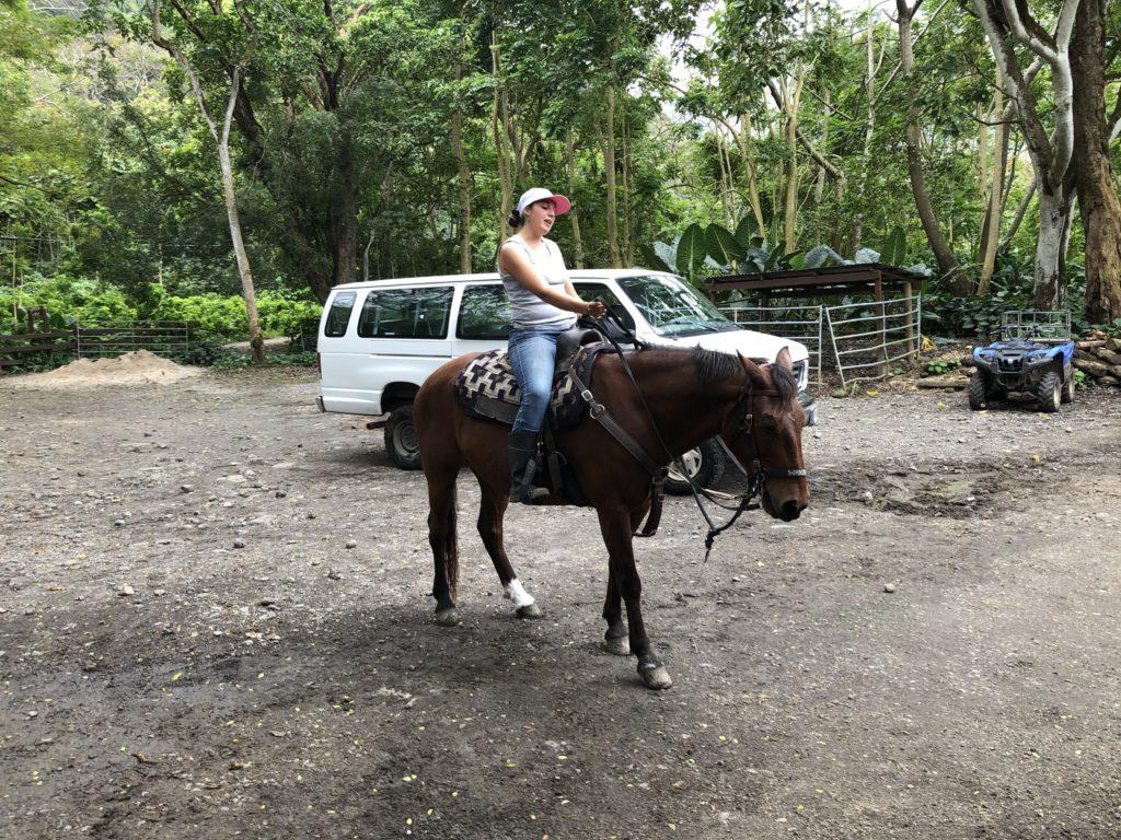 ワイピオ渓乗馬ツアー